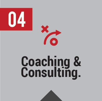 IT Coaching and Consulting